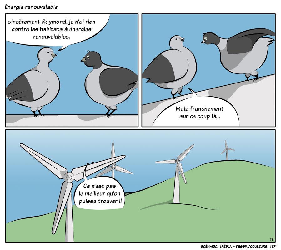 les pigeons  u2013 energie renouvelable